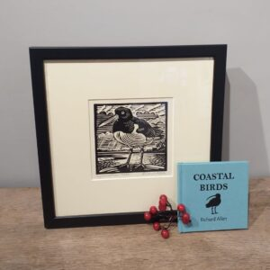 Richard Allen Coastal Birds Linocut and Book Set by Richard Allen
