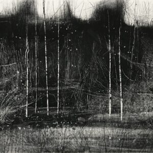 Dark Trees and Birch II, Monoprint by David A Parfitt RI