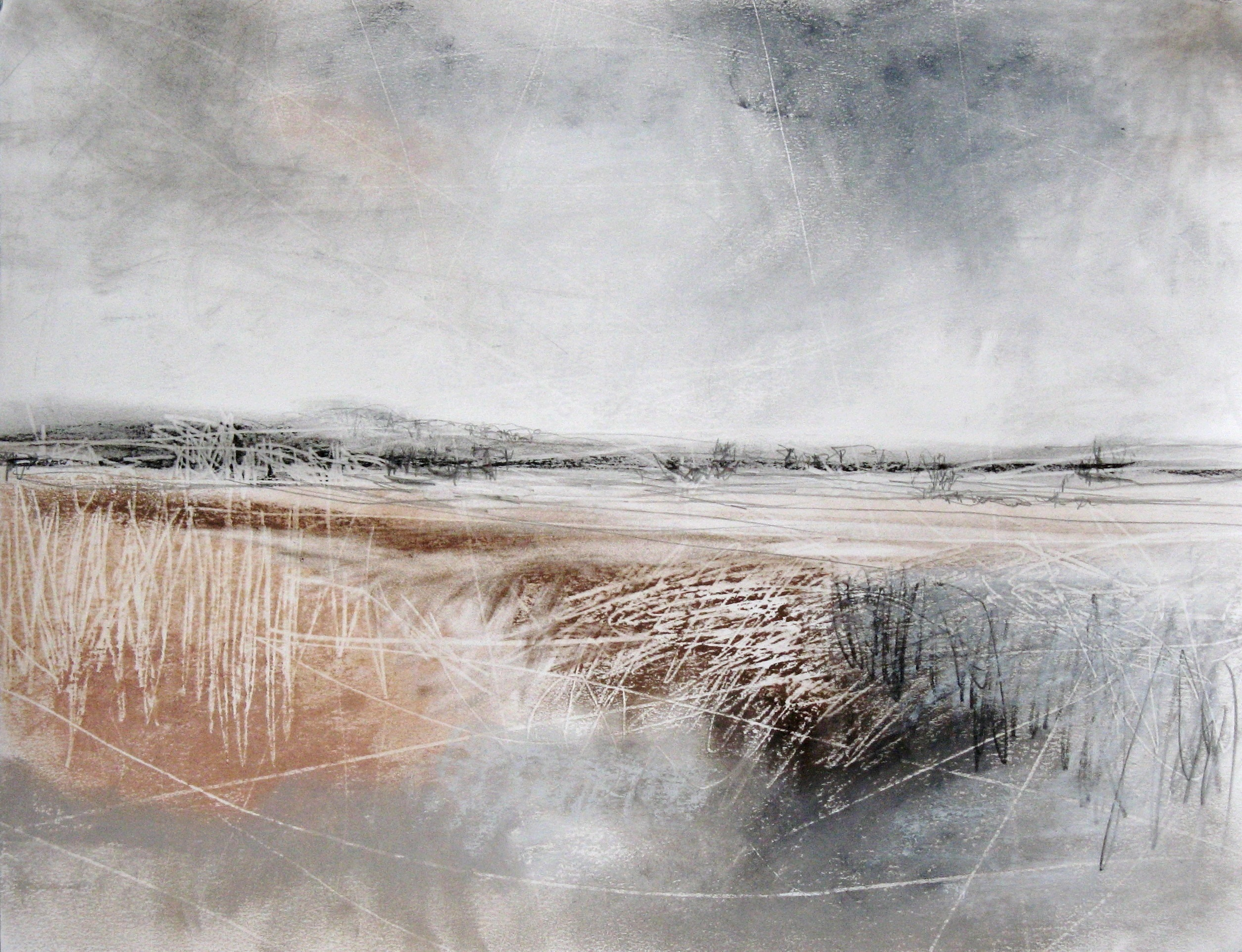 Wild Lands Pastel and Charcoal by Janine Baldwin PS